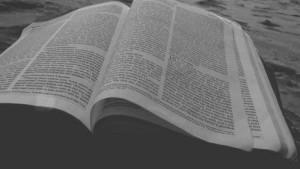 biblia640