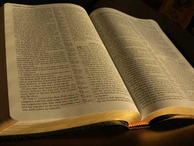 leer-la-biblia11